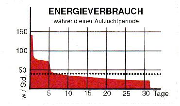 Ferkelaufzucht Energieverbrauch